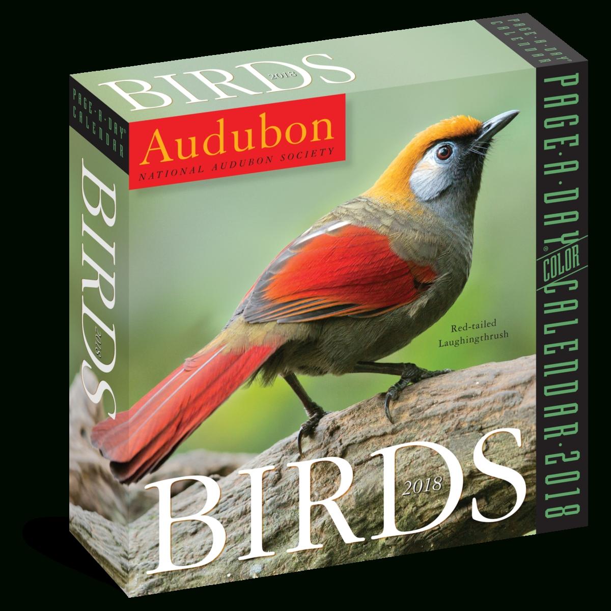 2020 Audubon Birds Page-A-Day Calendar