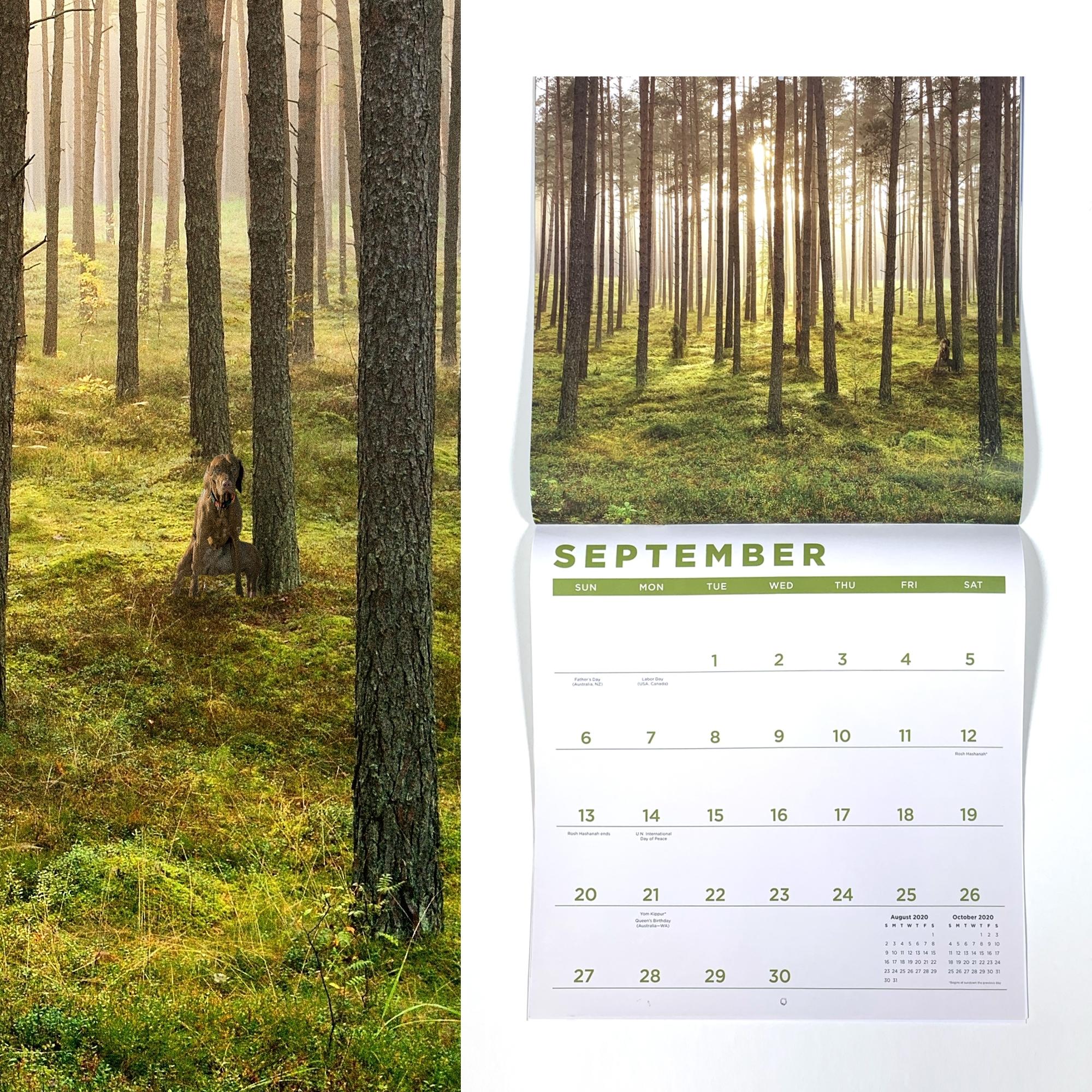 "2020 ""when Nature Calls"" Wall Calendar"