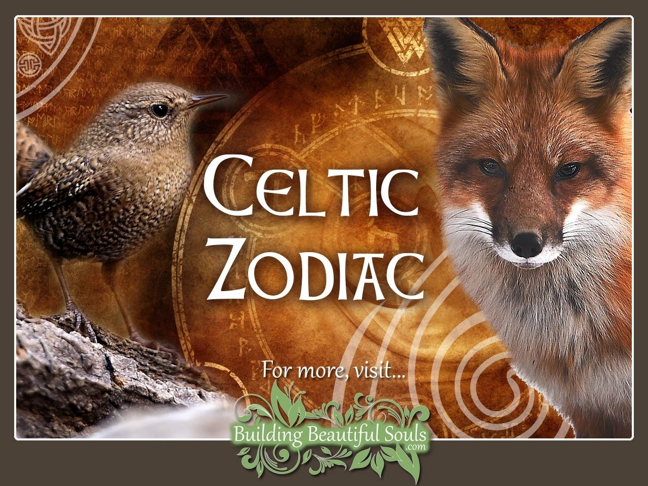 Celtic Zodiac Signs & Astrology | Celtic Animal Zodiac