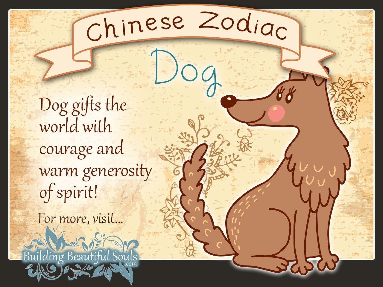 Chinese Zodiac Dog Child Personality & Traits   Chinese