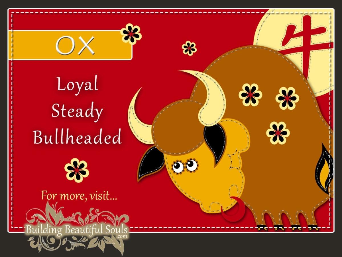 Chinese Zodiac Ox | Year Of The Ox | Funny Horoscopes