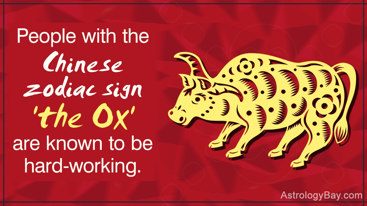 Detailed Information About The Chinese Zodiac Symbols And