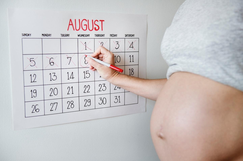 Due Date Calculator: The Most Precise Conception Calculator