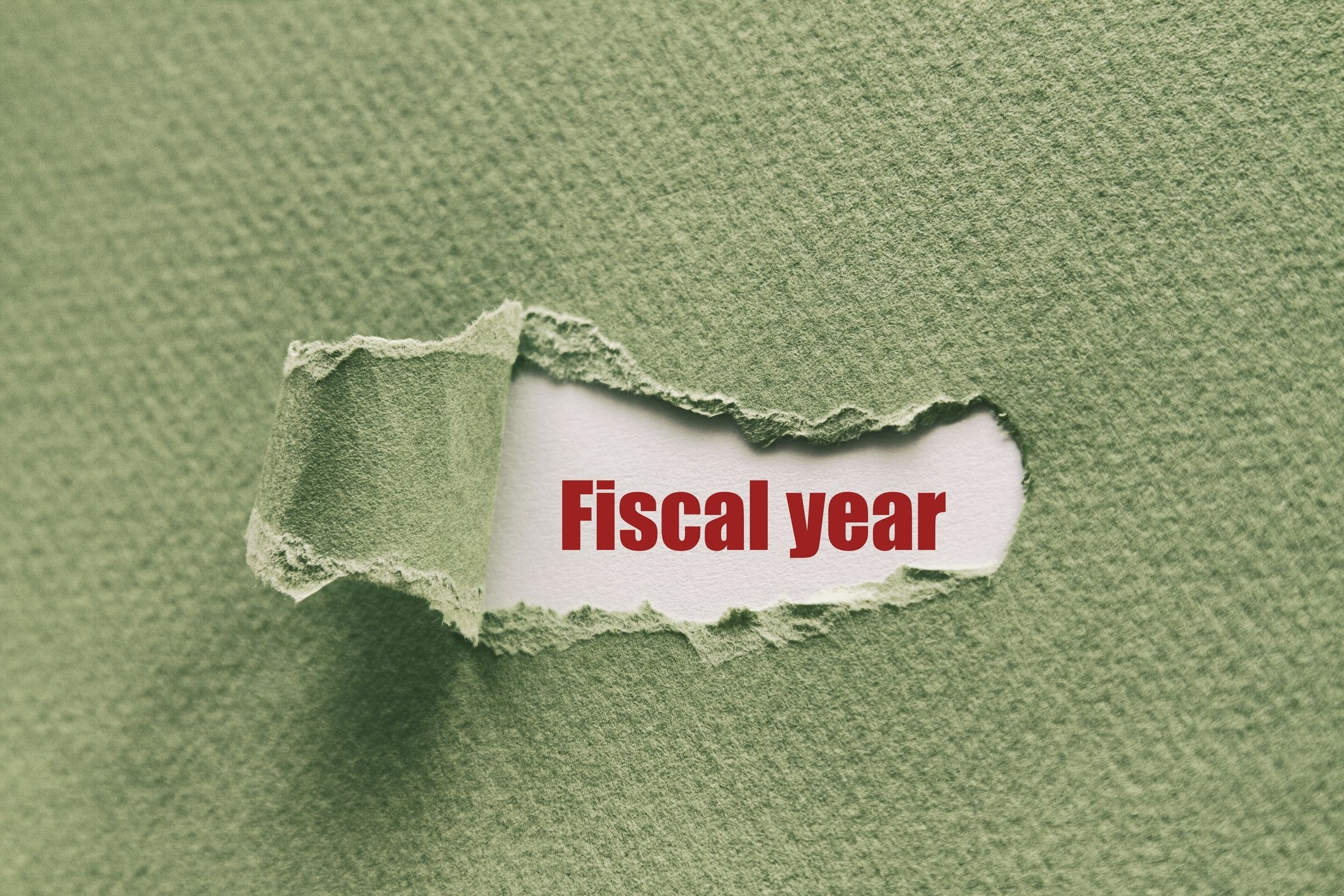 Fiscal Year (Fy) Definition