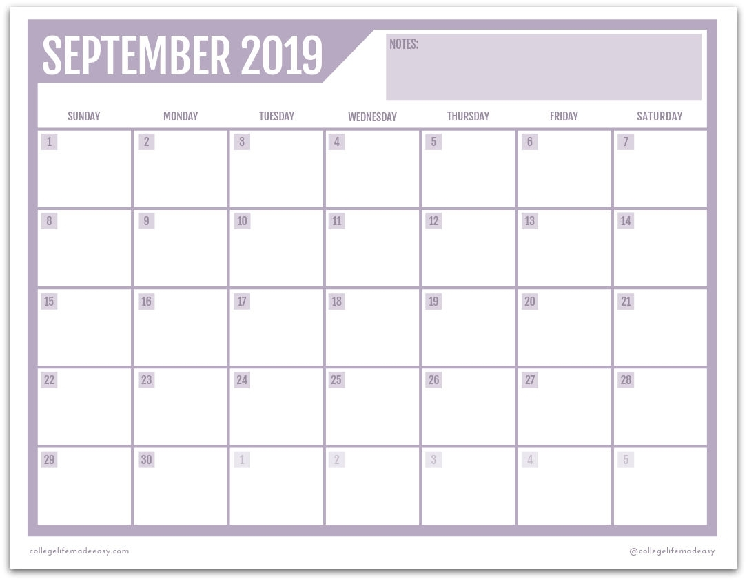 Free Printable 2019 Monthly Calendar (3 Cute Designs!)