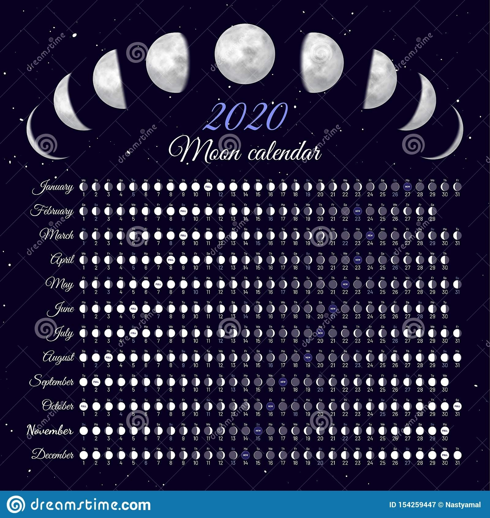 Lunar Cycles At 2020 Year. Stock Vector. Illustration Of