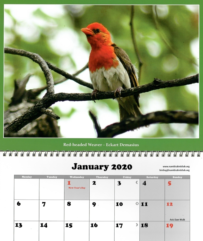 Viewing - Calendar Namibia 2020