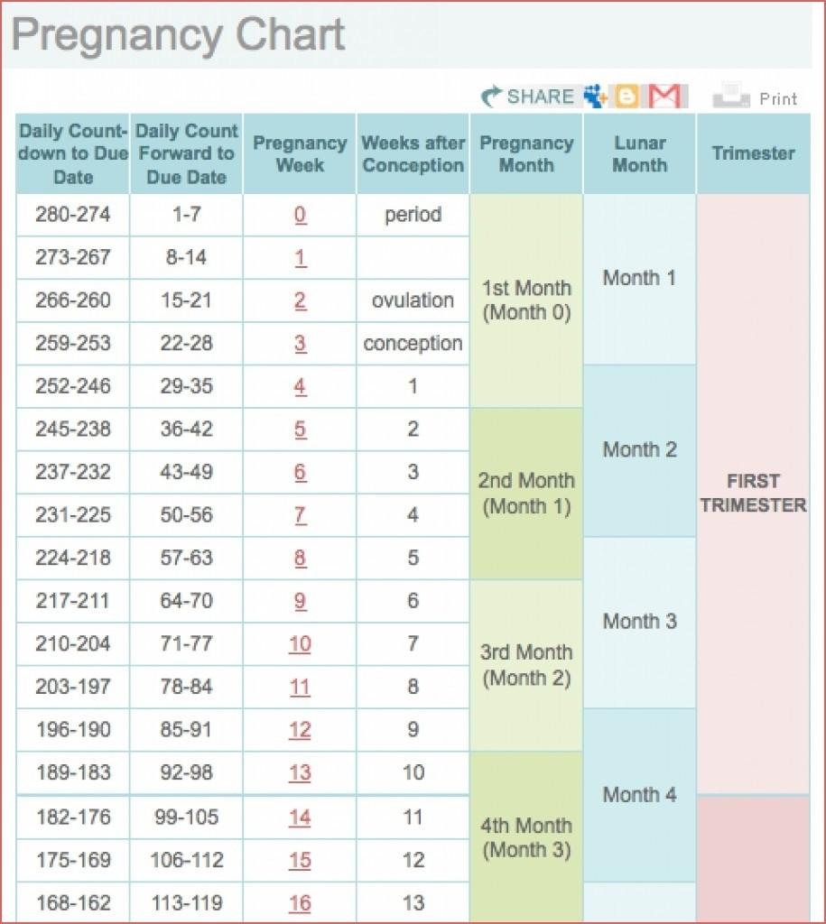 Weekweek Pregnancy Calendar | Calendar Printing Example
