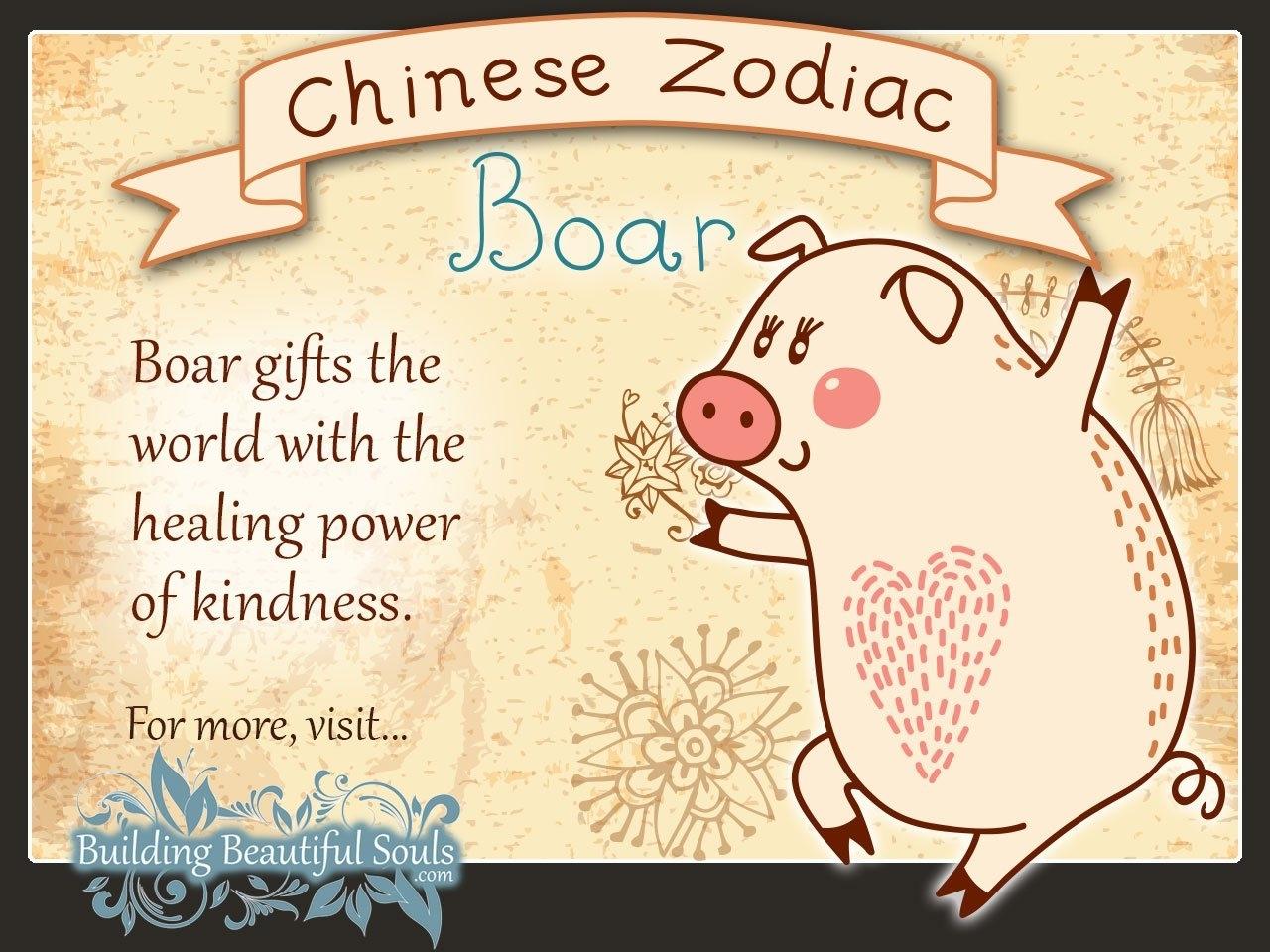 Chinese Zodiac Calendar Pig
