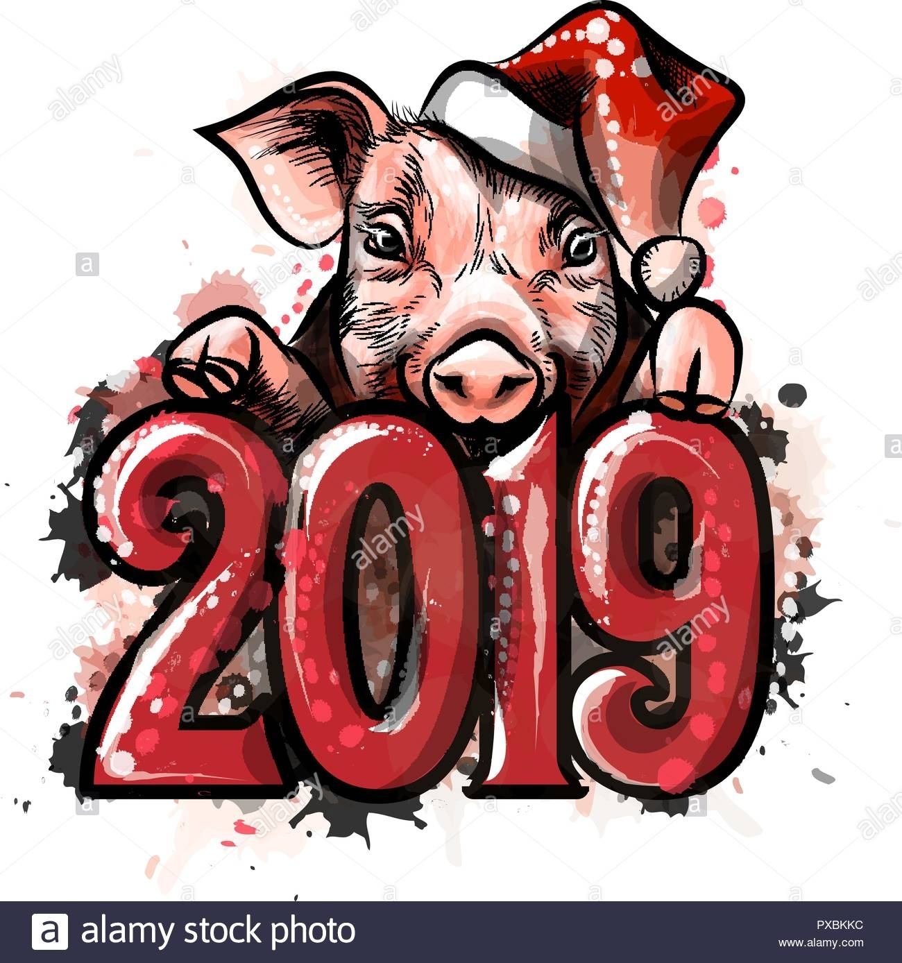 Chinese Zodiac Sign Year Of Pig, Happy Chinese New Year 2019