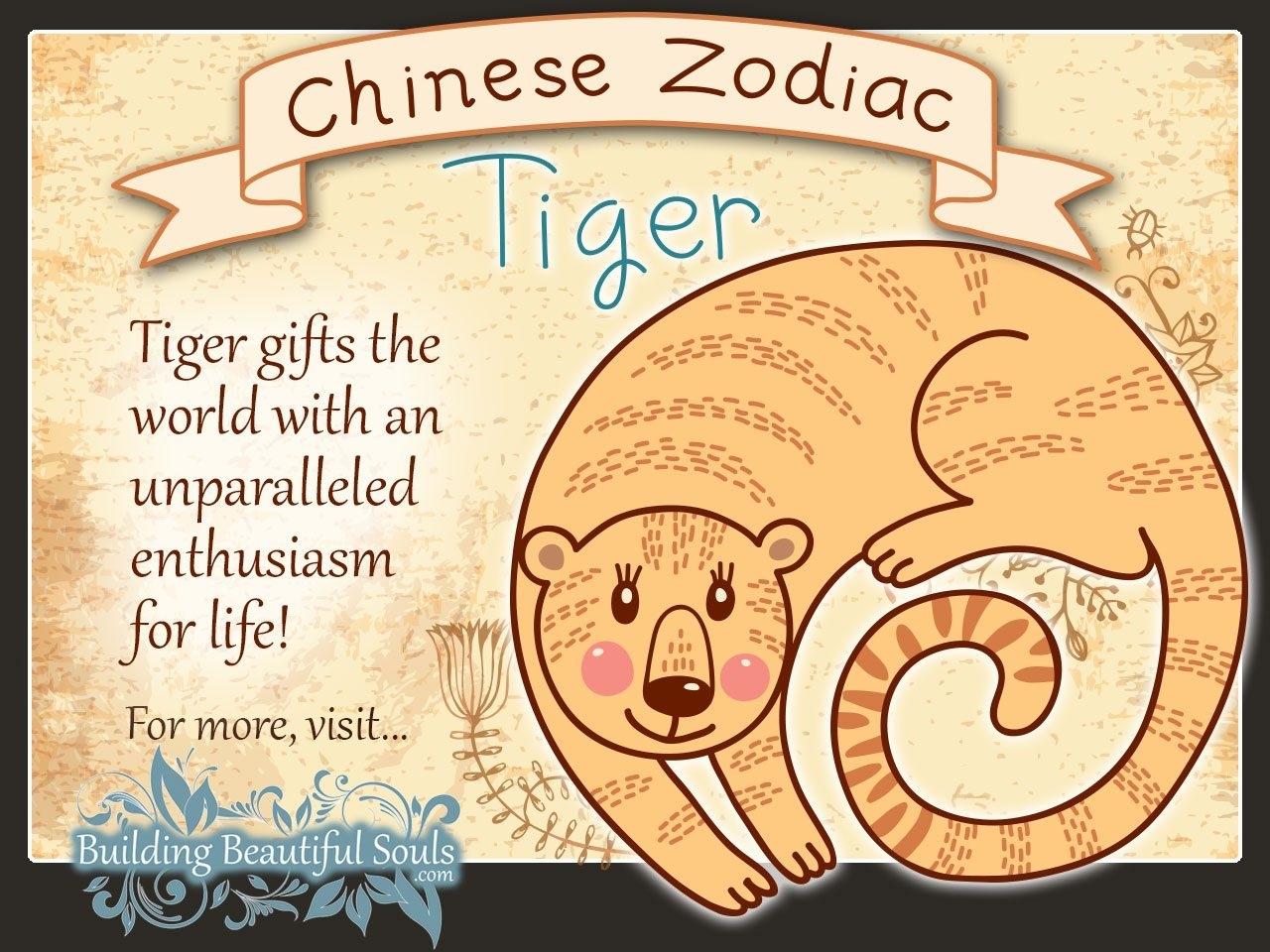 Chinese Zodiac Tiger Child Personality & Traits | Chinese