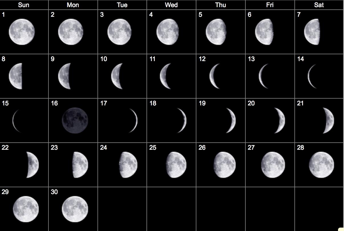 Moon Calendar 2019 January Month (Full & New Moon Phases