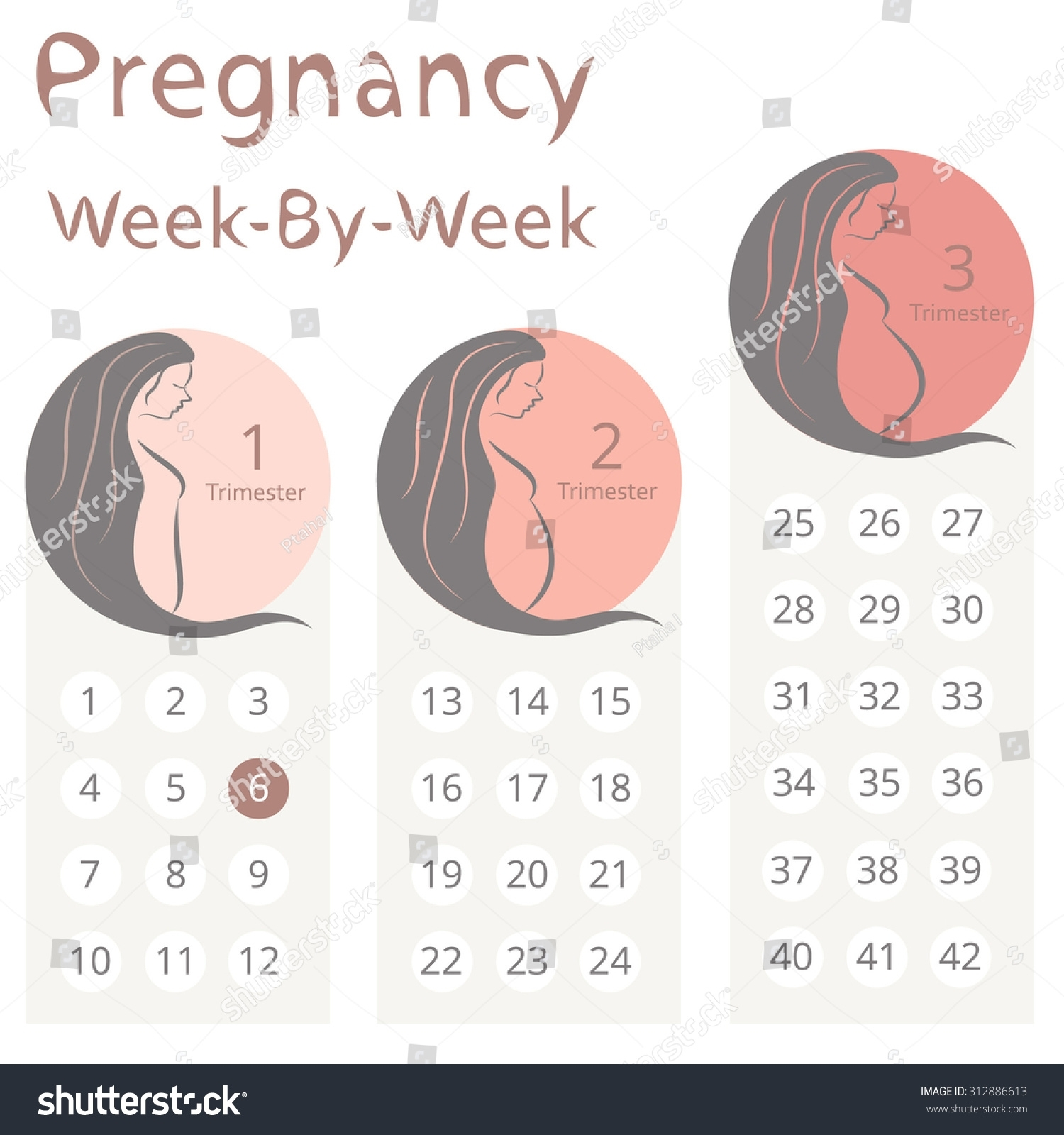 Pregnancy Calendar 3 Weeks | Calendar Printables Free Templates