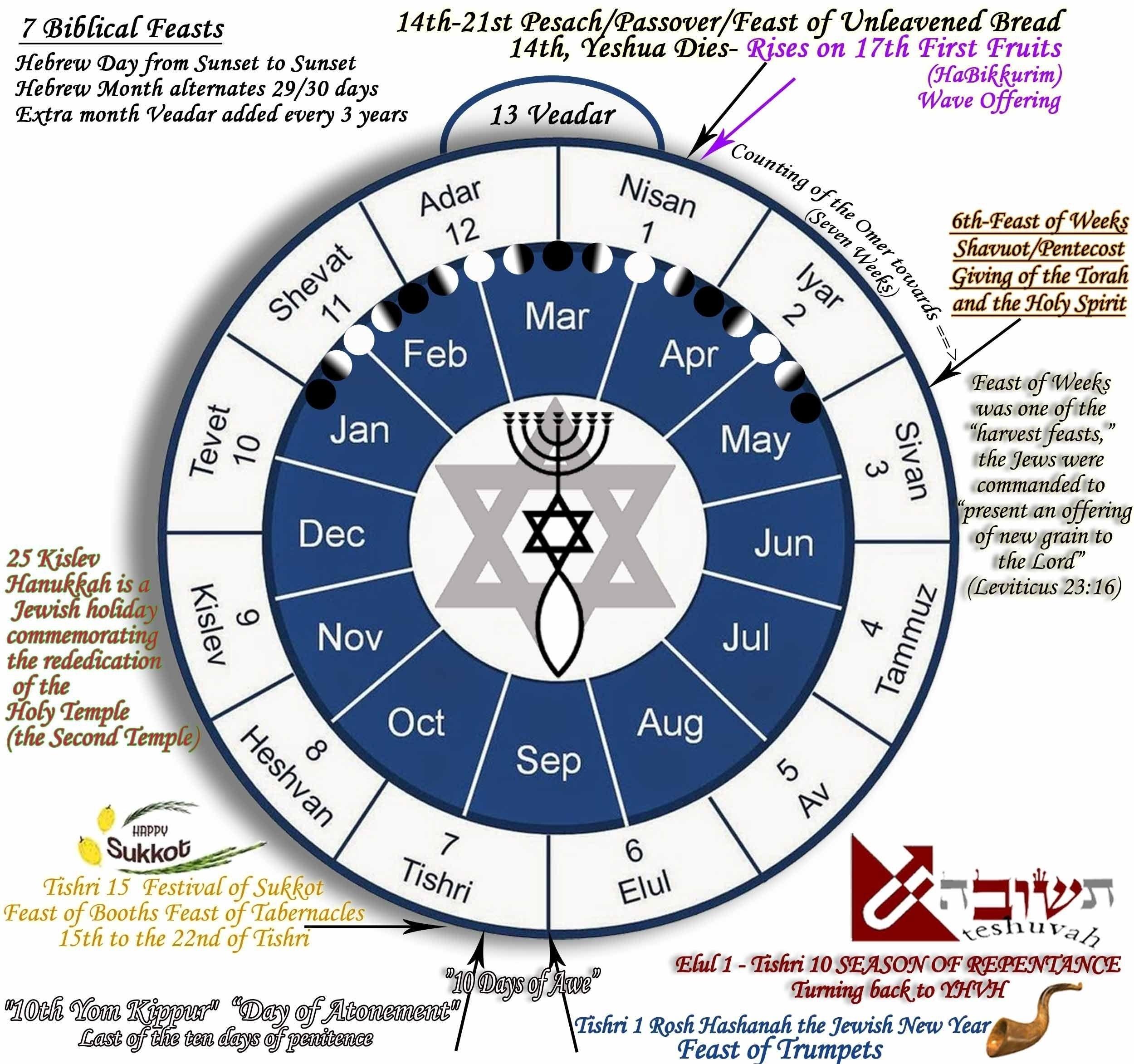 Hebrew Calendar 6Th Month In 2020 | Jewish Calendar, Hebrew