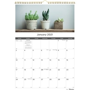 Rediform Succulent Plants Wall Calendar - Monthly - 1 Year - January 2021  Till December 2021 - 1 Month Single Page Layout - Twin Wire - Multi -
