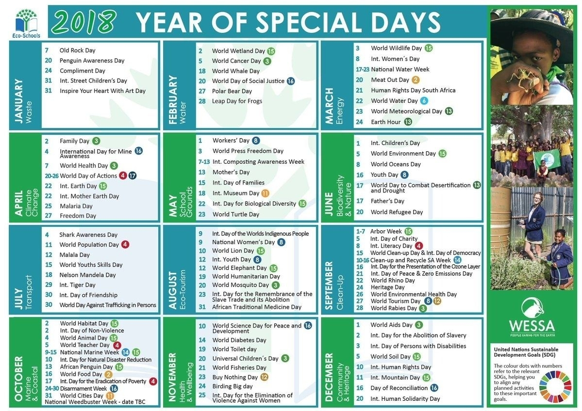 Year Calendar Of Special Days In 2020 | Special Day Calendar