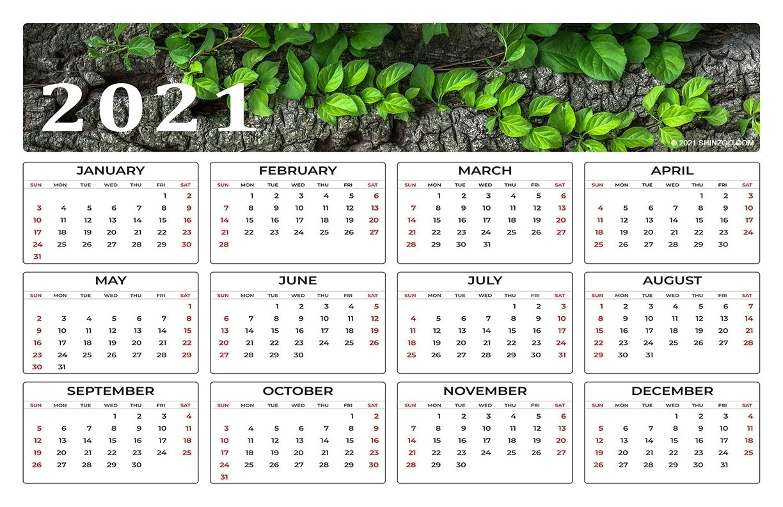 2021 Calendar At A Glance 11X17   Month Calendar Printable