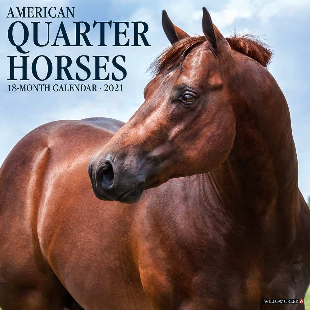 American Quarter Horses Calendar 2021 Willow Creek