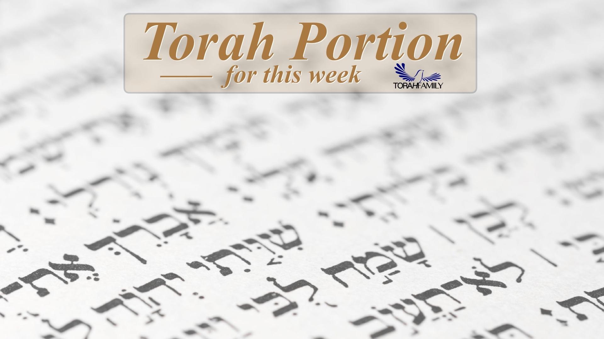 "B'Reisheet - ""In The Beginning""   Torah Family"
