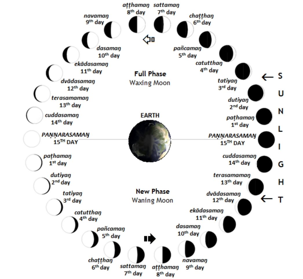 Chinese Zodiac Calendar Wheel   Ten Free Printable