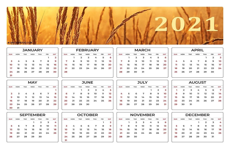 Printable Calendar 2021 Yearly 11X17   Printable Calendar 2021
